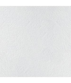 Панель потолочная Retail Tegular 600х600х14мм ARMSTRONG